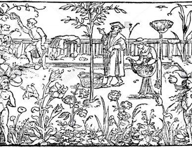Glorious Garden Picnic